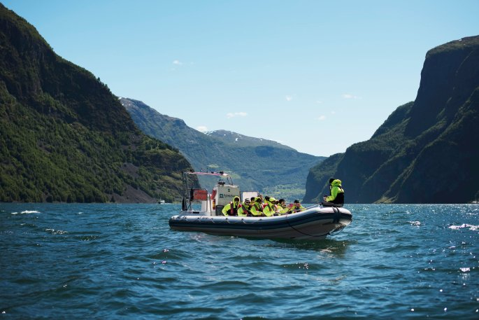 תוצאת תמונה עבור fjordsafari